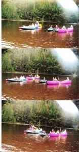 Kayaking Shoalhaven River