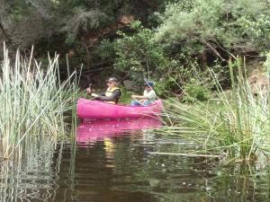 Canoe Sholhaven 3